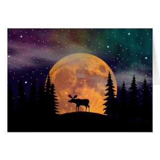 Northern Nights- Northern Lights Greeting Card