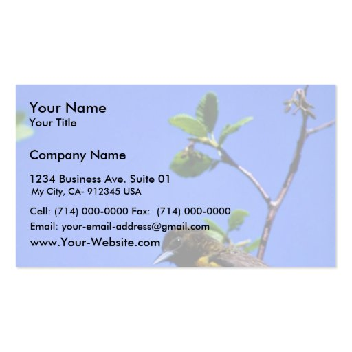 Northern Oriole Double-Sided Standard Business Cards (Pack Of 100)