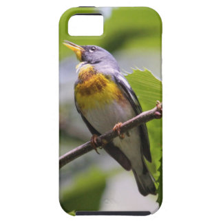 Northern Parula iPhone 5 Cover