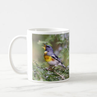 Northern Parula Coffee Mug