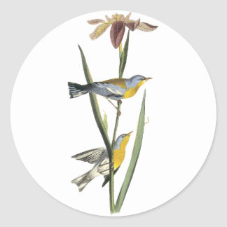 Northern Parula, John Audubon Classic Round Sticker