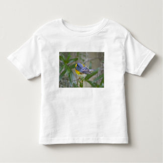 Northern Parula Parula americana) male Toddler T-shirt