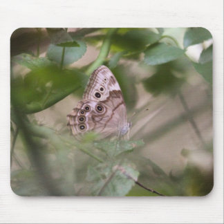 Northern Pearly Eye Mouse Pad