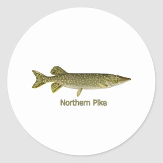 Northern Pike Art (titled) Classic Round Sticker