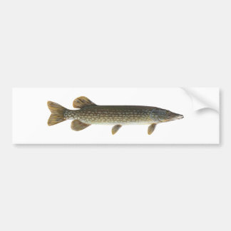 Northern Pike Bumper Sticker