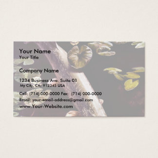 Northern Pike Business Card