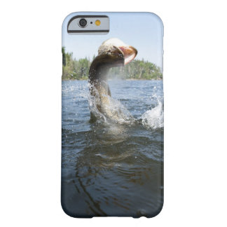 Northern Pike jumping out of water in a lake. Barely There iPhone 6 Case