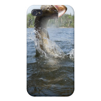 Northern Pike jumping out of water in a lake. Cases For iPhone 4