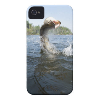 Northern Pike jumping out of water in a lake. iPhone 4 Case
