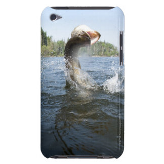 Northern Pike jumping out of water in a lake. iPod Touch Case-Mate Case