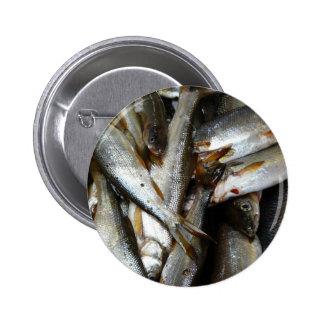 Northern Pike Minnow Fish Pins