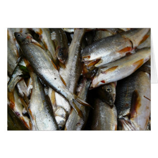 Northern Pike Minnow Fish Greeting Card