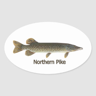 Northern Pike (titled) Oval Sticker
