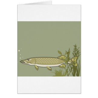 Northern Pike Vector Card
