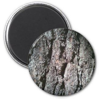 Northern Pine Tree Bark Magnet
