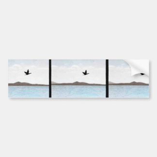 Northern Pintail Bumper Sticker