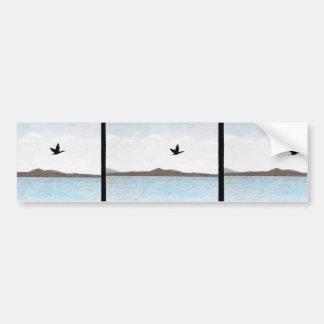 Northern Pintail Bumper Sticker