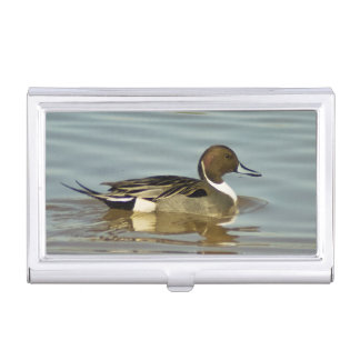 Northern Pintail business card holder