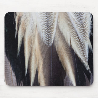 Northern Pintail Duck feather Mouse Pad