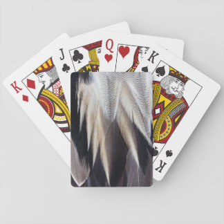 Northern Pintail Duck feather Playing Cards