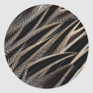 Northern Pintail Duck Feathers Classic Round Sticker