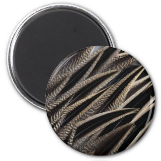 Northern Pintail Duck Feathers Magnet