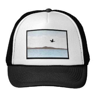Northern Pintail Trucker Hat