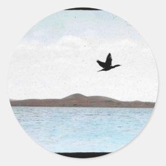 Northern Pintail Round Sticker