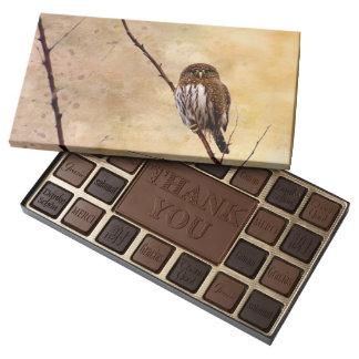 Northern Pygmy Owl Assorted Chocolates