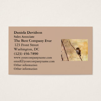 Northern Pygmy Owl Business Card