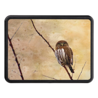 Northern Pygmy Owl Hitch Cover