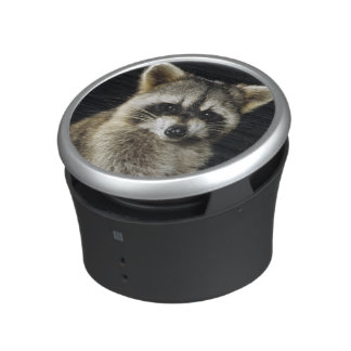 Northern Raccoon, Procyon lotor, adult at tree Bluetooth Speaker