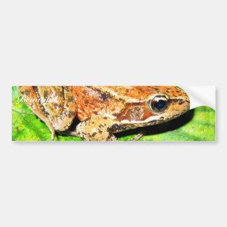 Northern Red legged frog Car Bumper Sticker
