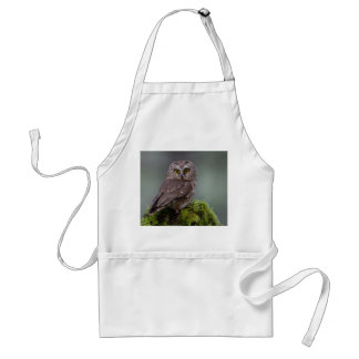 Northern Saw Whet Owl Adult Apron
