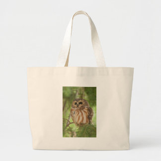 Northern Saw-whet Owl Canvas Bag