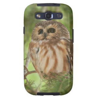 Northern Saw-whet Owl Samsung Galaxy S3 Cases