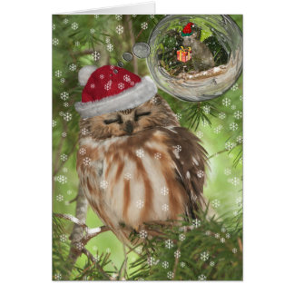 Northern Saw-whet Owl Christmas Card