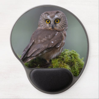 Northern Saw Whet Owl Gel Mouse Pad