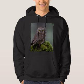 Northern Saw Whet Owl Hoodie