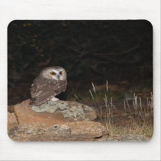 Northern Saw Whet Owl hunting at night Mousepad