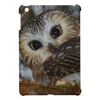 Northern Saw-whet Owl in a Tree iPad Mini Covers