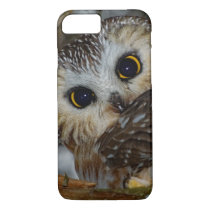 Northern Saw-whet Owl in a Tree iPhone 7 Case