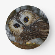 Northern Saw-whet Owl in a Tree Round Clock