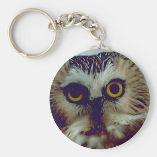 Northern Saw-whet owl Keychain