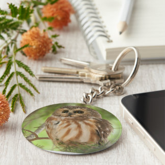 Northern Saw-whet Owl Keychains