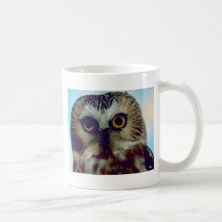 Northern Saw Whet Owl Mugs