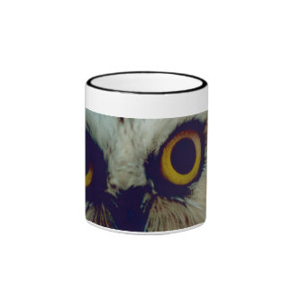 Northern Saw Whet Owl Mug