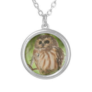Northern Saw-whet Owl Custom Necklace