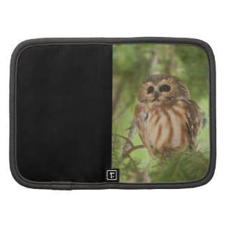 Northern Saw-whet Owl Folio Planners
