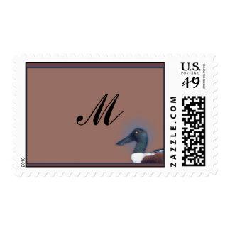 Northern Shoveler Stamp